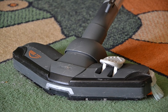 vacuum cleaner on a rug