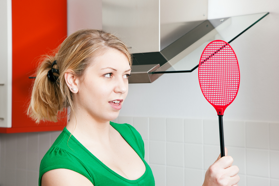 chasing a fly with a fly swatter
